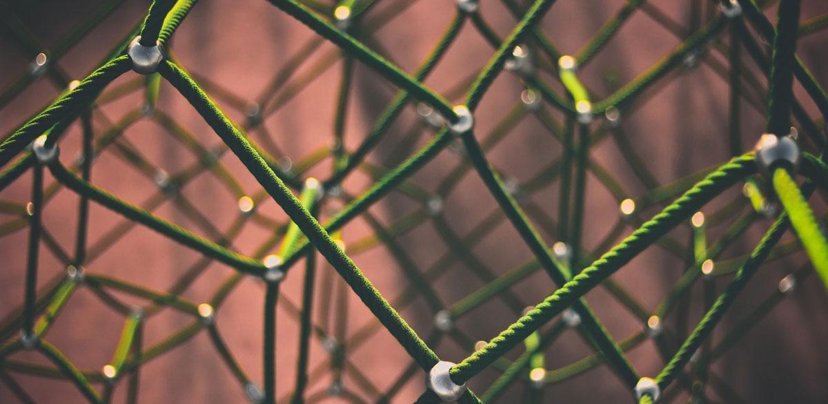 Wundnetzwerk